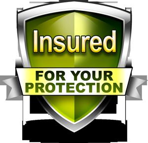fully_insured